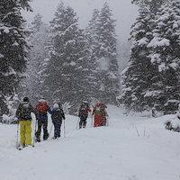 Ски-тур для начинающих